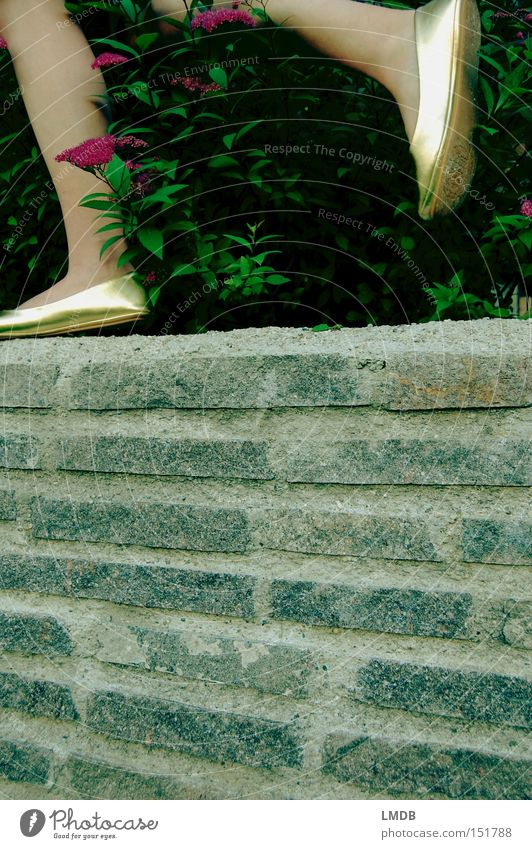 Cindarella on the run Legs Footwear Wall (barrier) Herbaceous plants Blossom Gold Fairy tale Princess Escape Walking Haste Running Luxury Beautiful