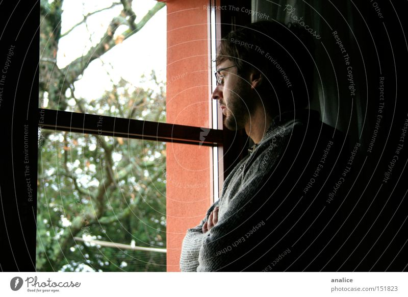 lost thoughts Human being Man Youth (Young adults) Tree Loneliness Window Sadness Think Adults Masculine Grief Gloomy Eyeglasses Observe Infinity Serene