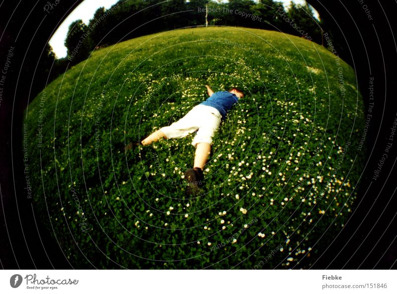 Embrace the world ... Meadow Grass Daisy Relaxation Round Summer Sleep Sunbathing Joie de vivre (Vitality) Calm Peace Fisheye Freedom Youth (Young adults)