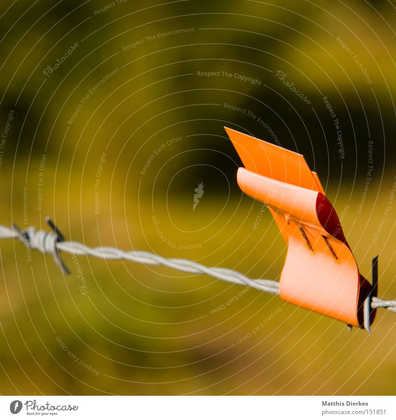 Nature Orange Signs and labeling Flag Agriculture Obscure Pasture Fence Warning label Signal Barbed wire