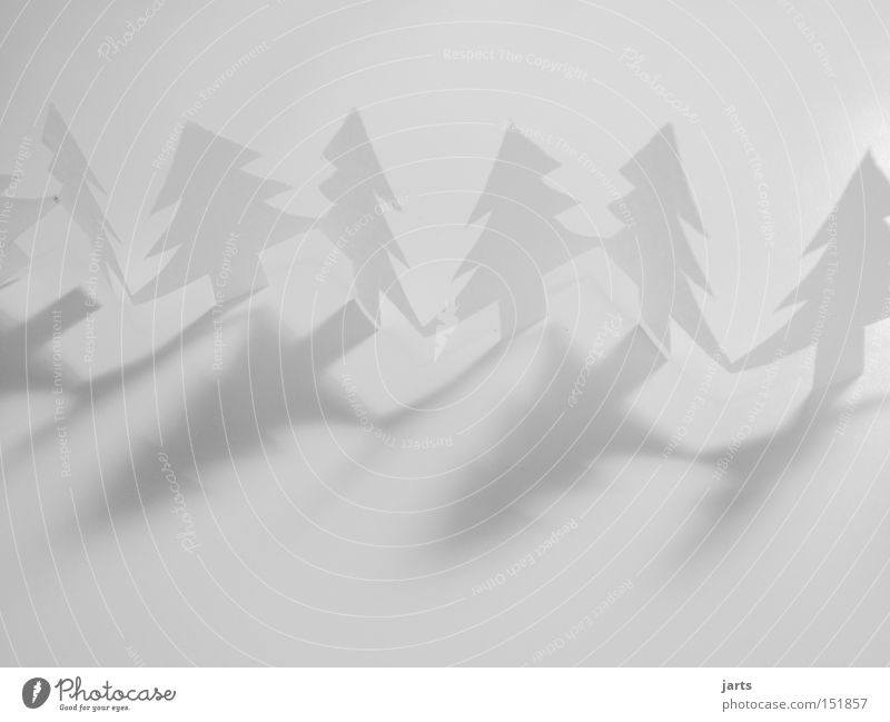 Isolated Image Christmas & Advent Christmas decoration White Tree Winter Snow Feasts & Celebrations Copy Space Paper Black & white photo Christmas tree