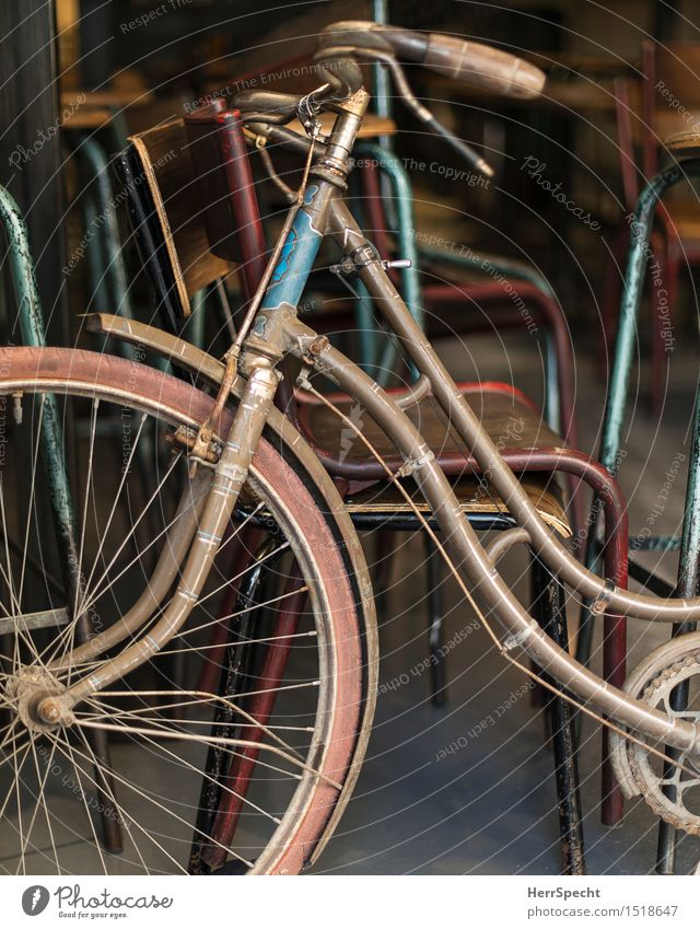 eye-catcher Chair Bicycle Wood Metal Old Esthetic Retro Beautiful Blue Brown Gray Ladies' bicycle Bicycle handlebars Bicycle frame Decoration Parking