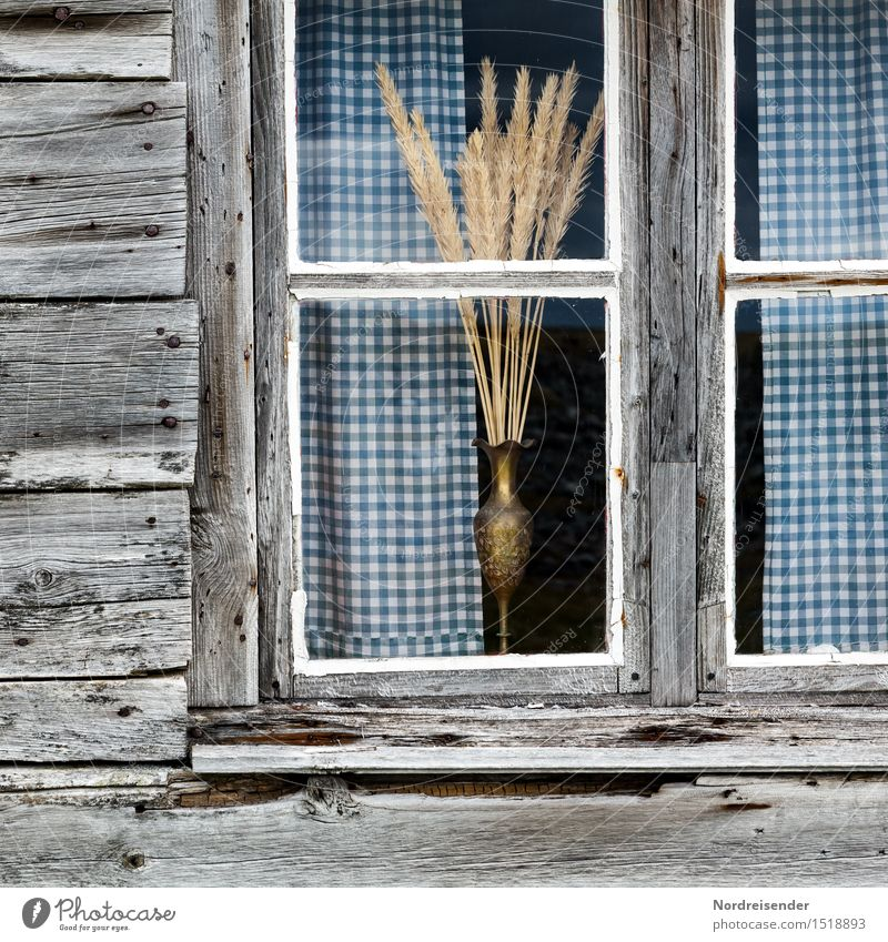 Loneliness Calm House (Residential Structure) Window Senior citizen Wood Facade Living or residing Decoration Glass Esthetic Authentic Poverty Transience Hope