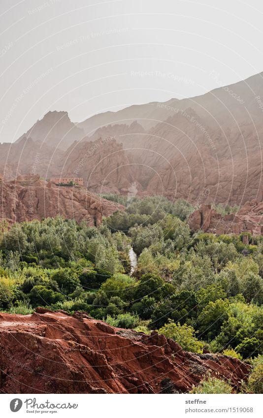 Arabian Dream VI Morocco Orient vacation Tourism Atlas Mountains mountain rock Stone