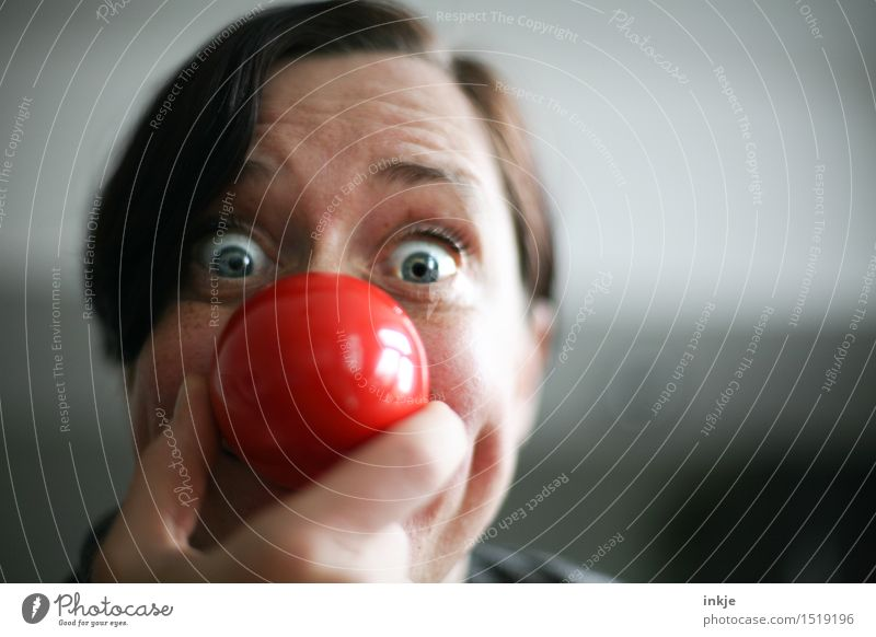 Close up portrait of a woman with red clown nose Lifestyle Joy Leisure and hobbies Entertainment Feasts & Celebrations Carnival Woman Adults Face Nose Pug nose