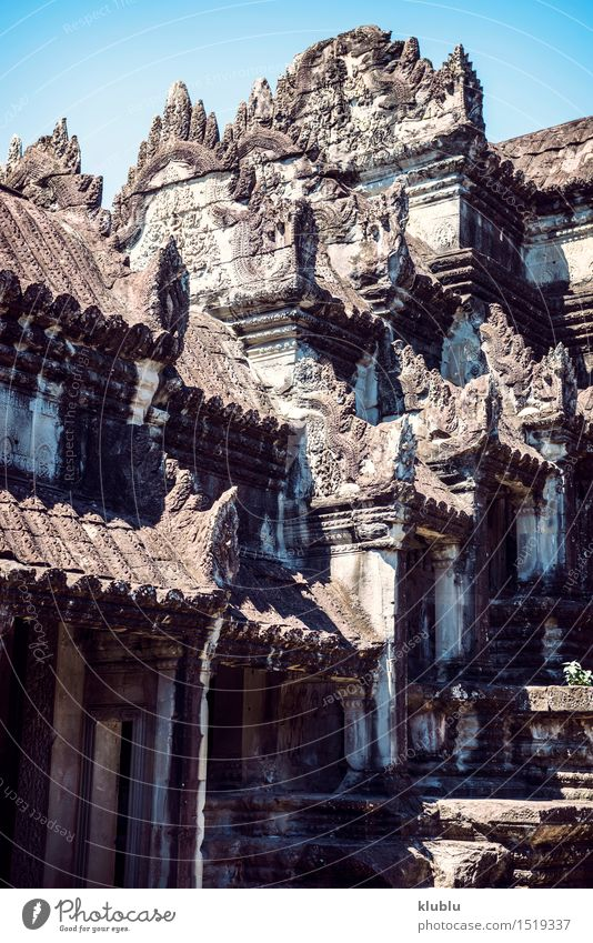 Angkor Wat Temple view, Siem reap, Cambodia Old Beautiful Tree Architecture Religion and faith Building Above Horizon Tourism Vantage point Culture Protection