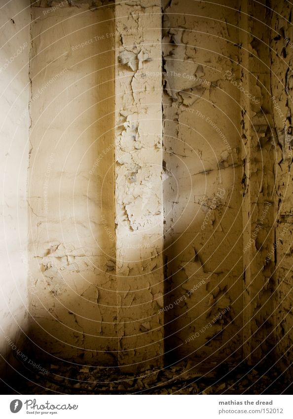 THIS IS A WALL Wall (building) Old Motionless Loneliness Simple Room Bursting Plaster Colour Sunlight Shaft of light Corner Seam Small room Empty Derelict