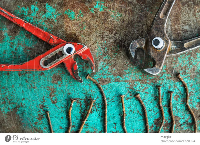 Jealousy about food! A pair of pincers and sanitary pliers with eyes and several rusty nails as food Nutrition Fast food Work and employment Craftsperson
