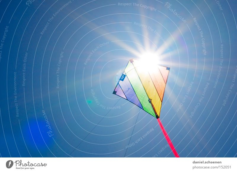 fly far away Wind Kite Kiting Colour Multicoloured Summer Autumn Sun Flying Sunbeam Weather Light Sky Blue Joy Celestial bodies and the universe Aviation