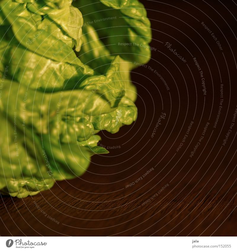 Green Nutrition Healthy Food Fresh Kitchen Vegetable Delicious Vitamin Organic produce Salad Lettuce Organic farming Crunchy Vegetarian diet
