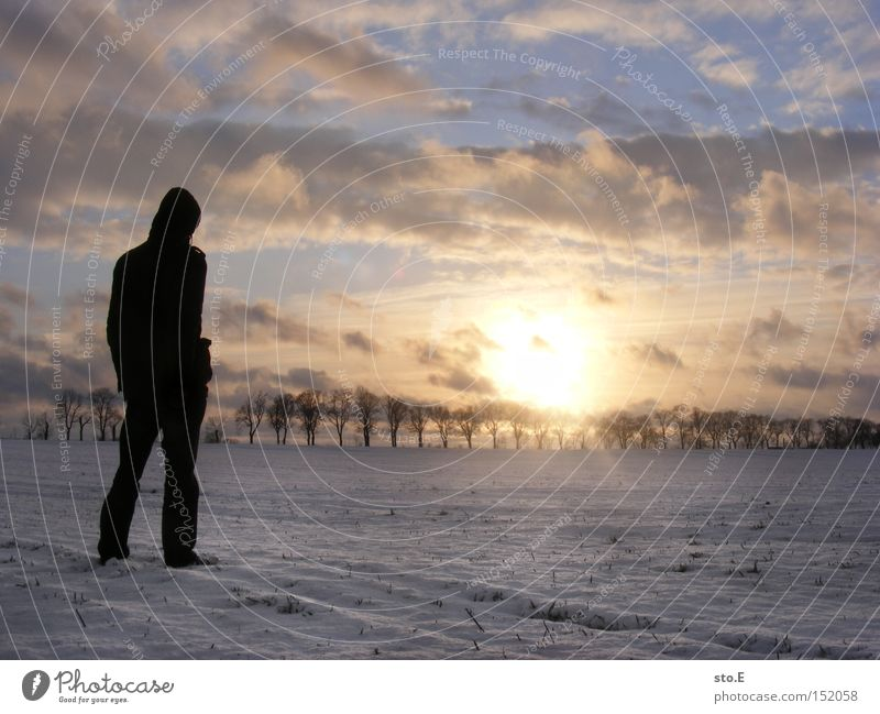 Human being Nature Sky Winter Far-off places Cold Snow Landscape Moody Field Posture Avenue Brandenburg