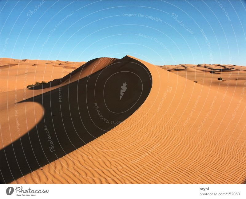 Warmth Sand Desert Hot Infinity Dry Beach dune Dune Thirst Sparse Sahara Shadow play Incubating