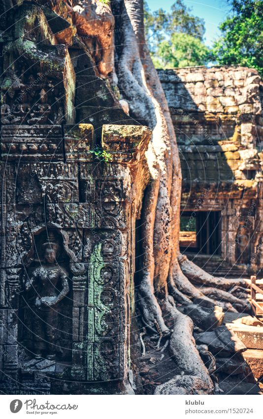 Angkor Thom in Cambodia Vacation & Travel Tourism Culture Earth Tree Park Virgin forest Rock Ruin Building Architecture Monument Stone Old Historic Wild Society