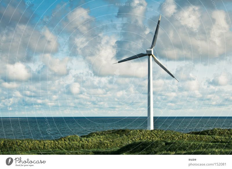 windmill Ocean Economy Energy industry Renewable energy Wind energy plant Environment Sky Clouds Coast Authentic Ecological Colour photo Exterior shot Deserted