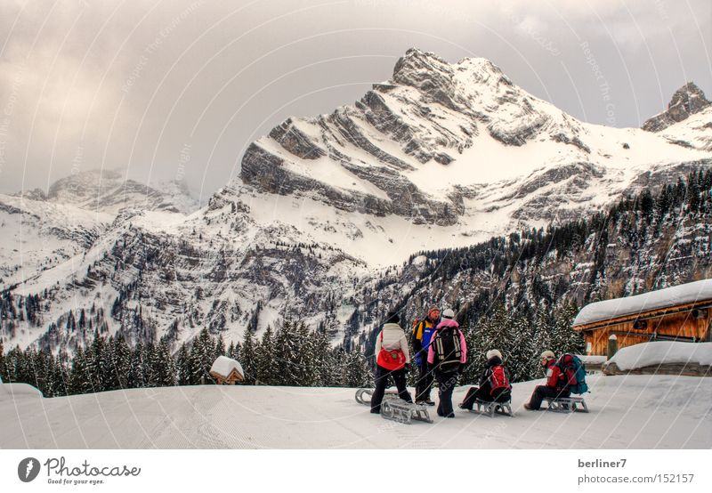 Winter Mountain Snow Group Idyll Alps Snowcapped peak Snowscape Winter sports Sleigh Alpine hut Sledding Sledge