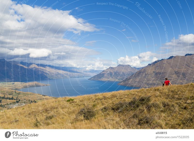 Man enjoying view from Queenstown Hill, New Zealand Vacation & Travel Tourism Sightseeing Island Mountain Human being Adults Youth (Young adults) 1 Nature