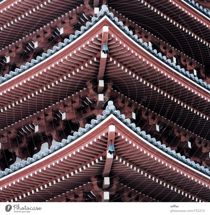 Asia Japan Tokyo Temple Tasty House of worship Buddhism Pagoda Shintoism
