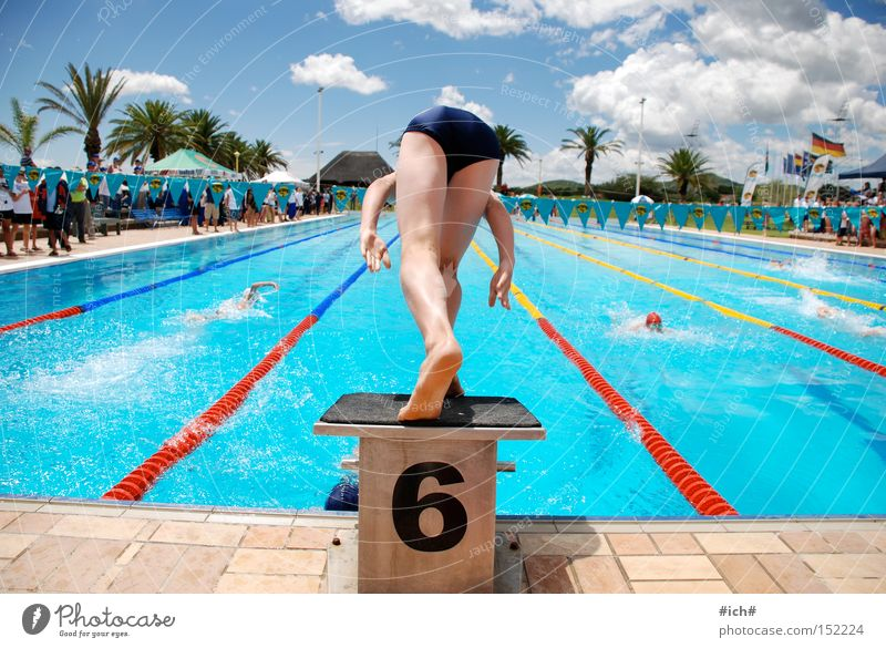 Water Blue Clouds Sports Playing Beginning Digits and numbers Swimming pool Palm tree 6 Springboard Swimming trunks Swimmer (professional sportsman)