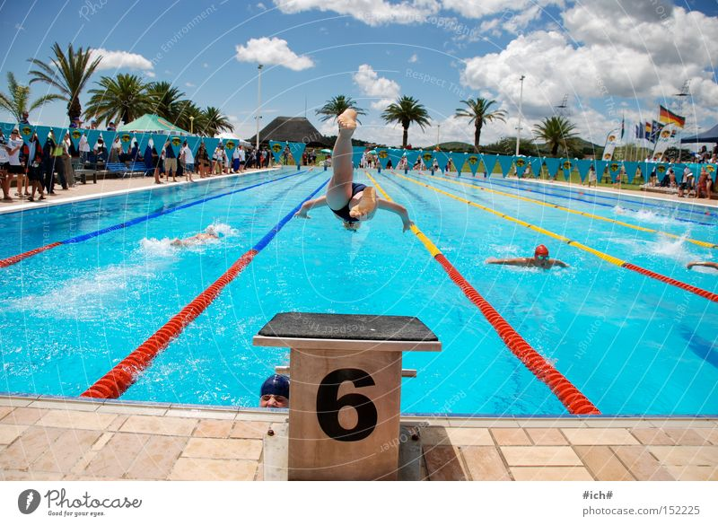 Six in the water II Swimming pool Swimming trunks Springboard Water 6 Blue Clouds Palm tree Swimmer (professional sportsman) Beginning Sports Flying Head first