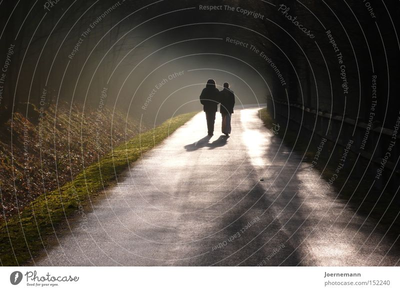 Autumn Happy Lanes & trails Couple Contentment Together Fog Hiking In pairs To go for a walk Dusk Lovers Going Married couple Back-light