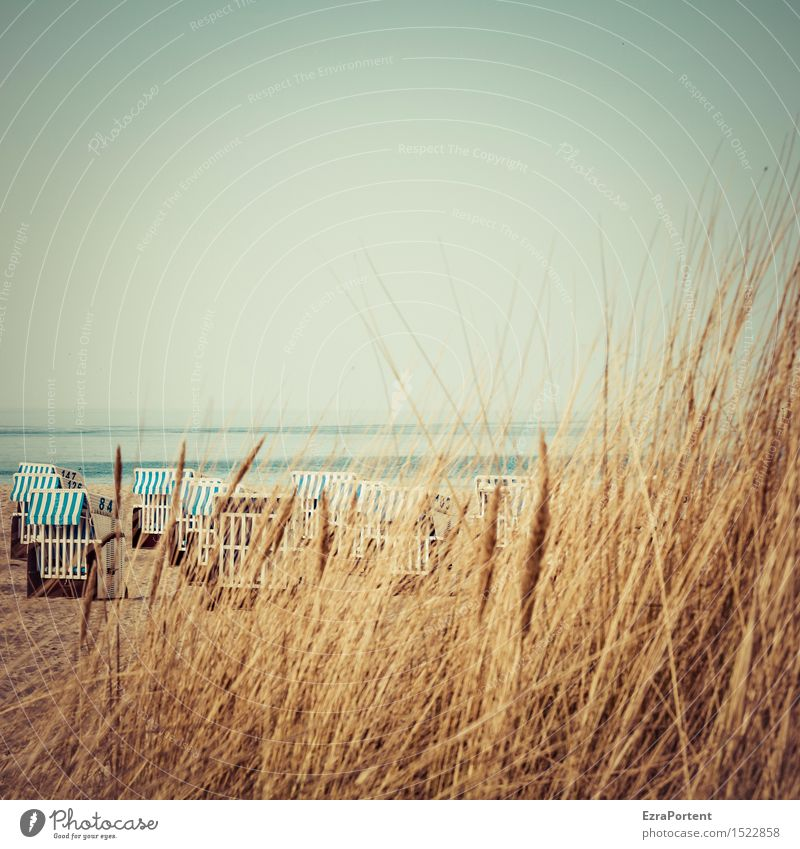 beach observation Relaxation Calm Vacation & Travel Tourism Trip Summer Beach Ocean Nature Landscape Sky Spring Beautiful weather Grass Baltic Sea Blue Brown