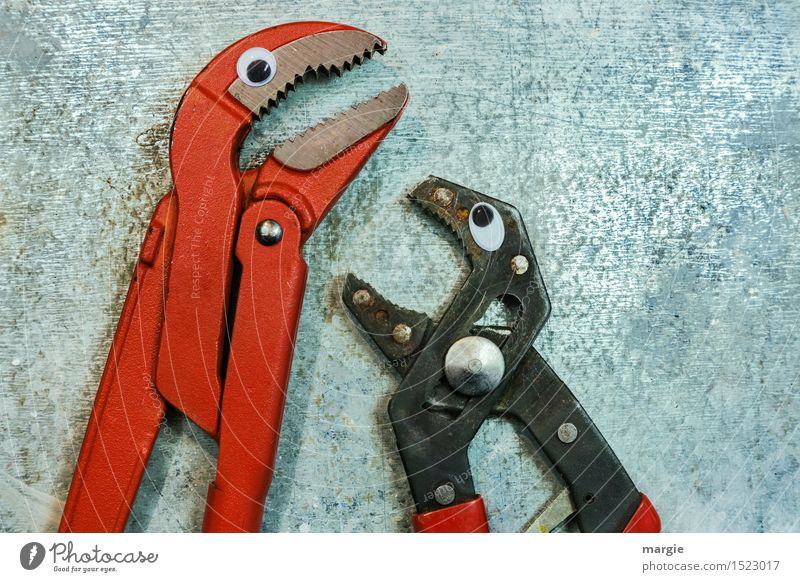 Calm down! Two pincers with eyes Work and employment Profession Craftsperson Workplace Construction site Services Craft (trade) Tool Claw Animal Bird 2 Metal