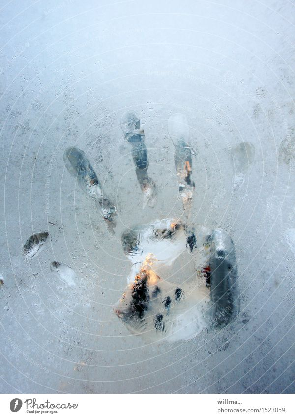 the ice-cold little hand n°2 Winter Ice Frost Cold handprint Hand Frozen Pane Window Frostwork Fingerprint Light blue Colour photo Copy Space top