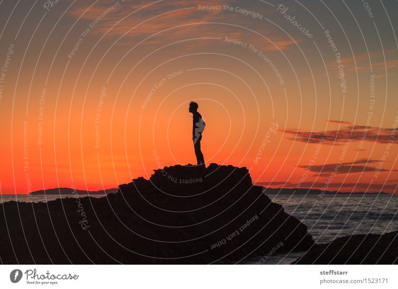 Silhouette of a man at sunset on a rock Human being Sky Youth (Young adults) Blue Water Ocean Red 18 - 30 years Black Adults Yellow Coast Healthy Stone Pink Orange