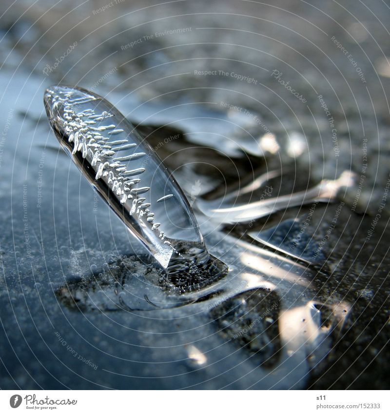 Nature Water Beautiful Winter Cold Wall (barrier) Ice Glass Stand Clarity Transience Mirror Express train Icicle Work of art Art