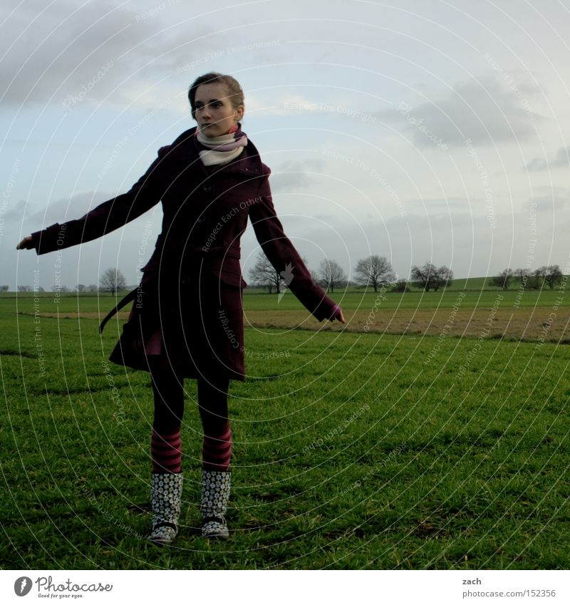 wind chill Winter Field Meadow Human being Woman Clouds Grief Coat Cold Youth (Young adults) dreariness Sadness