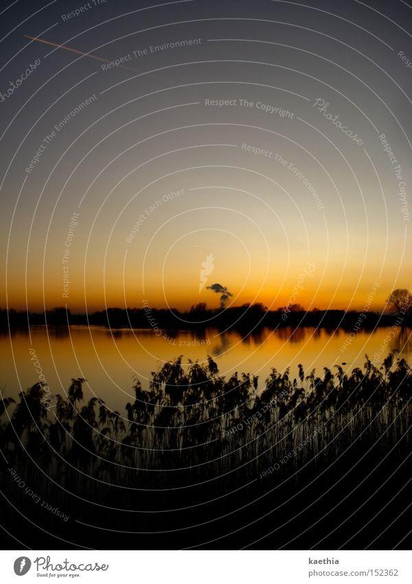 Nature Water Sky Plant Calm Far-off places Autumn Lake Orange River Bushes Clarity Common Reed Considerable Dusk Progress