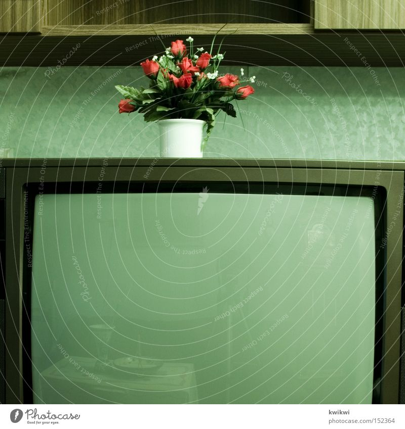 ... TV set Television Old Old fashioned Flower Living or residing Living room Grief Statue