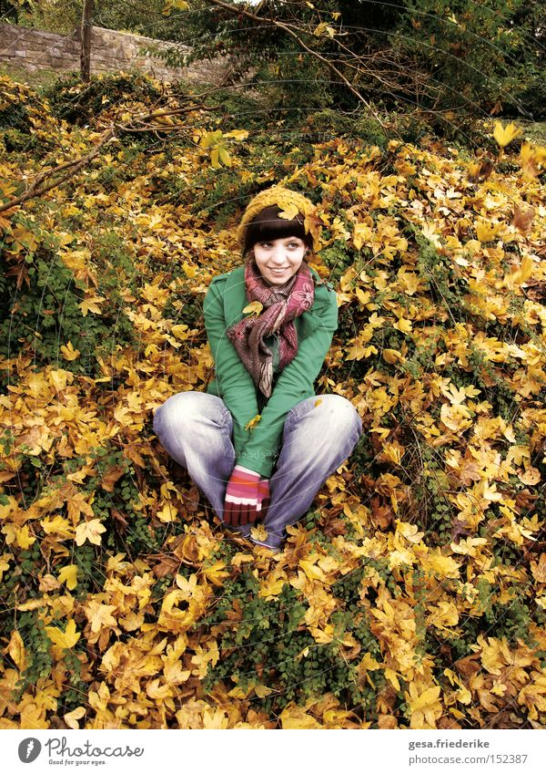 see the sea Laughter Autumn Leaf Harmonious Woman Human being Happy Contentment Seasons Yellow Joy