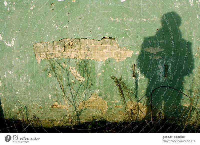 Human being Man Plant Wall (building) Sadness Wall (barrier) Hope Derelict Broken Breakage