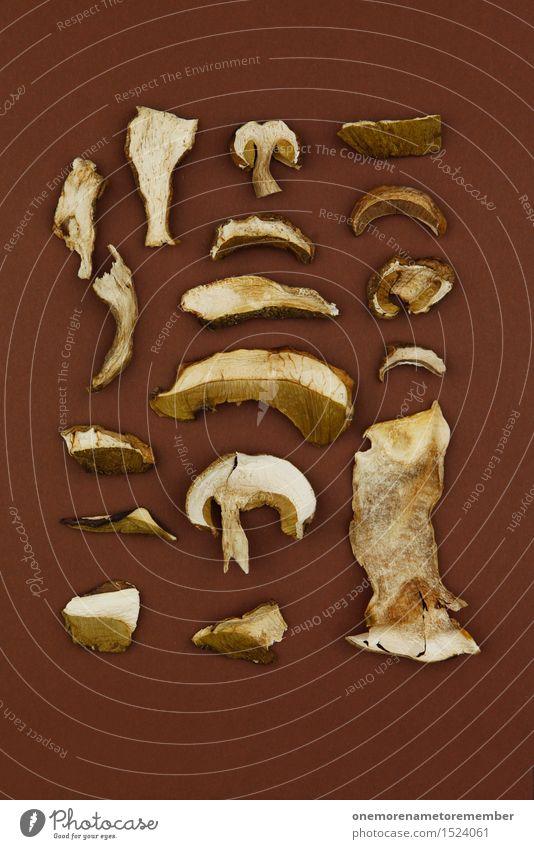 collector's item Work of art Esthetic Collection Accumulate Mushroom Mushroom cap Mushroom picker Beatle haircut Mushroom soup Many Woodground Brown Mosaic