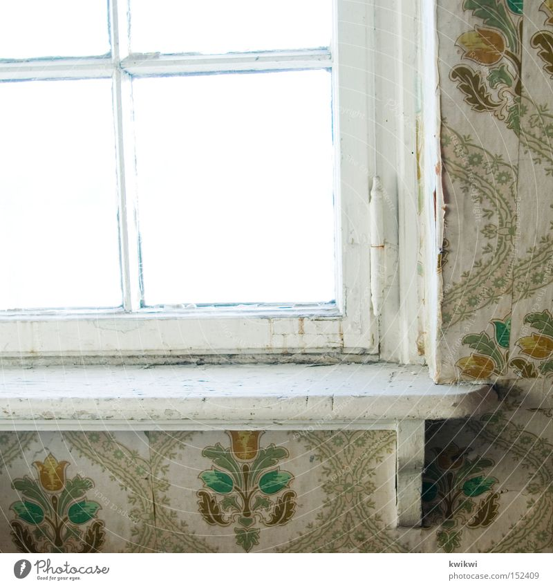 in 1954 Window Old Wallpaper Derelict Wood Tumbledown Living or residing Transience