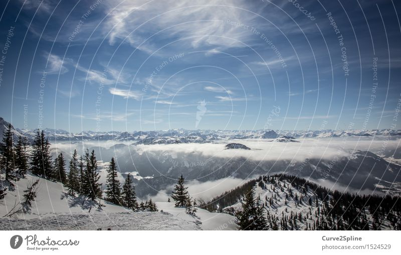 Iceworld Landscape Elements Sky Clouds Winter Beautiful weather Fog Frost Snow Tree Forest Hill Alps Mountain Peak Snowcapped peak White Austria Far-off places