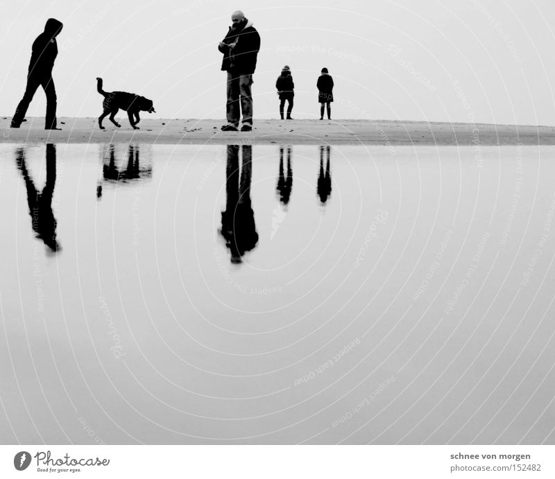 christmas society Man Dog Woman Beach Water Ocean Reflection Calm Relaxation Vacation & Travel Black White Black & white photo Coast Reflection & Reflection