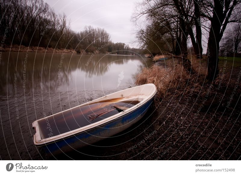 Water Old Tree Winter Watercraft Gloomy River Broken Transience Derelict Decline Shabby River bank Go under Dreary Rowboat