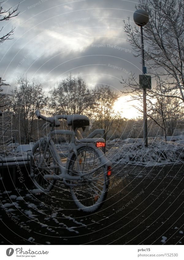 Snow-covered bicycle Bicycle Cold White Sky Blue Winter Lamp Loneliness snowed over