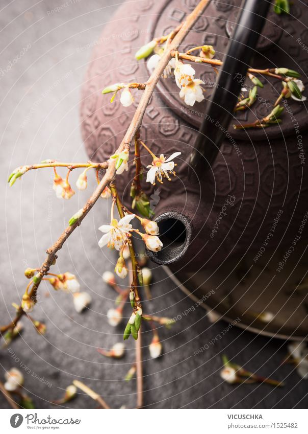 Iron teapot with fresh flowers Beverage Hot drink Tea Lifestyle Style Nature Leaf Blossom Design Chinese Cherry blossom Zen Teapot Tea house tea shop