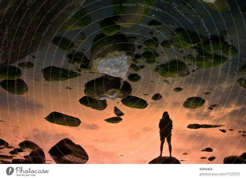 Human being Water Sky Ocean Beach Loneliness Far-off places Dream Stone Sadness Coast Scientist Sunset Stand End Mirror