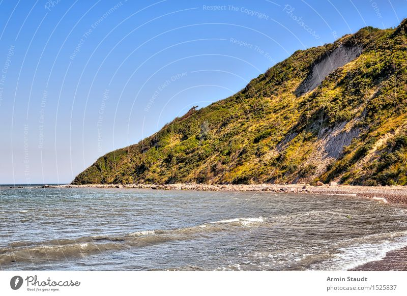 Coast - Hiddensee Life Senses Relaxation Calm Vacation & Travel Tourism Summer vacation Beach Environment Nature Sand Cloudless sky Beautiful weather Hill Bay
