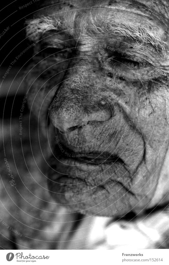 Man Old Senior citizen Laughter Contentment Skin Time Human being Tracks Wrinkles Past Grandfather Wisdom Grandparents