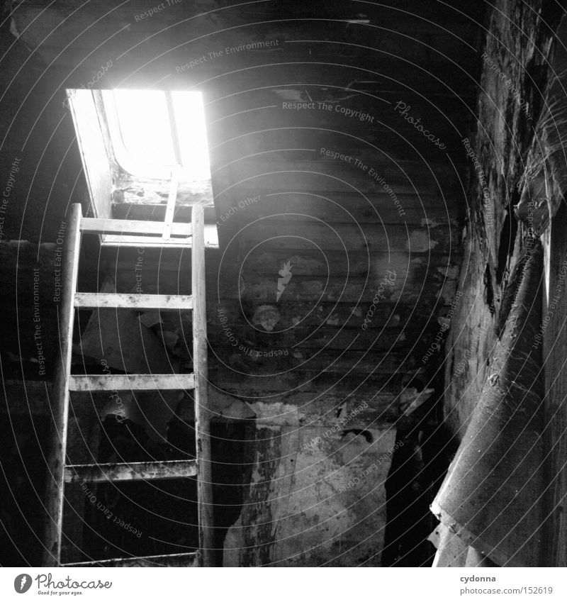 House (Residential Structure) Loneliness Window Room Time Living or residing Transience Mysterious Derelict Ladder Nostalgia Attic Villa Old fashioned Vacancy
