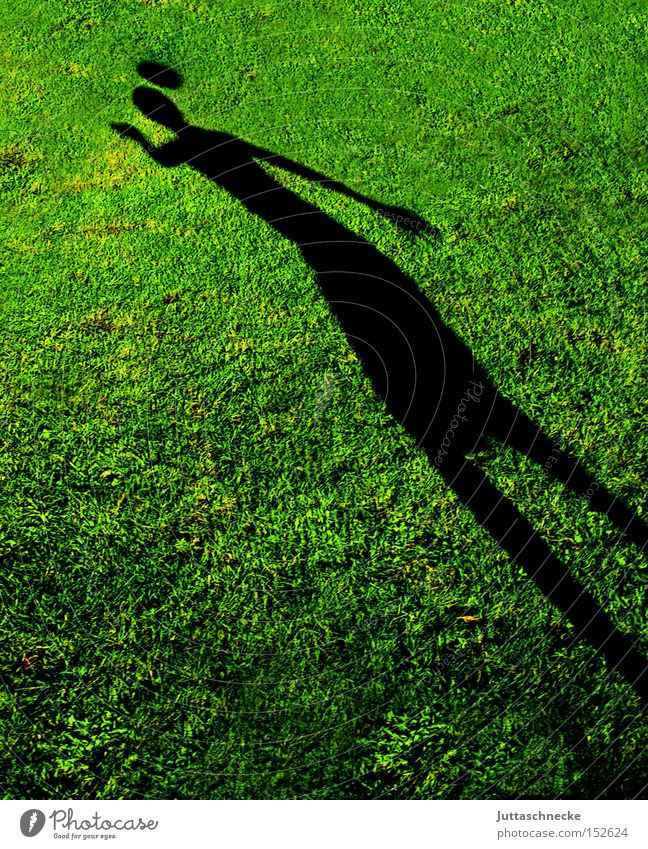 Youth (Young adults) Sports Playing Grass Soccer Foot ball Success Ball Lawn Grass surface Shadow Header