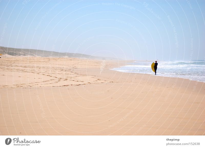 Ocean Beach Sports Playing Sand Waves Coast France Surfing Aquatics Atlantic Ocean High tide Tide Low tide Surfboard