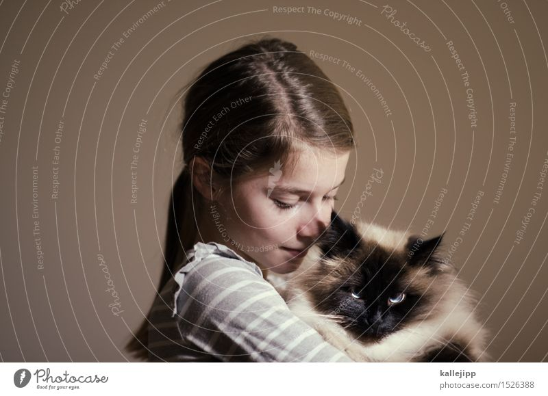 Cat Human being Animal Girl Face Love Hair and hairstyles Head Infancy Smiling To hold on Pelt Pet Domestic cat Hold Affection