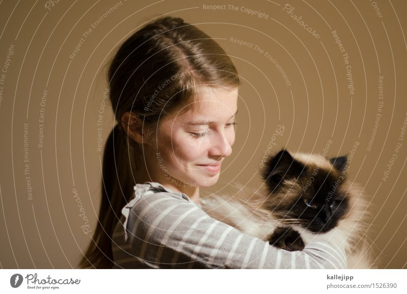 catpower Girl Life Head Hair and hairstyles Face Eyes Nose Mouth Lips 1 Human being Animal Pet Cat Pelt Smiling Laughter Blonde Brown Acceptance Trust Safety