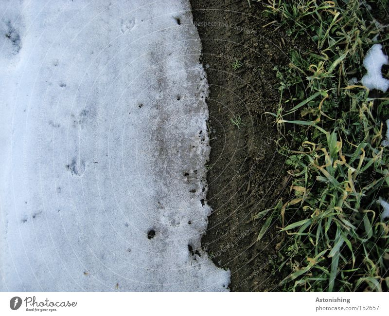 snow line Winter Snow Ice Frost Grass Meadow Dark Bright White Border Floor covering Ground Contrast Copy Space left Deserted Bird's-eye view Dirty Earth